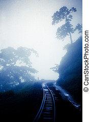 Mini TrainTrack From Neral to Matheran, Maharashtra, India