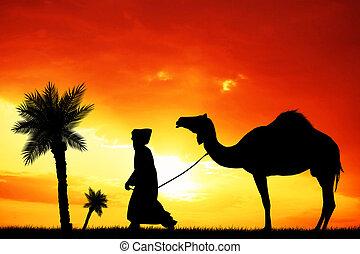 Bedouin in the desert at sunset