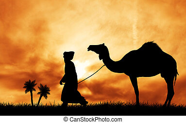 camel in the desert at sunset