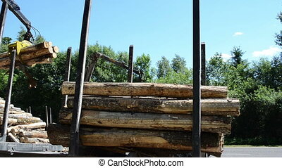 logs loading - heavy equipment loading with clipper cut logs...