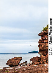 Beautiful Landscape of a Cliff and Seagull Passing by -...