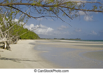 Empty Bahamian Beach - The empty beach at the Lucayan...