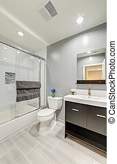 banheiro, Banheiro, luxo, casa