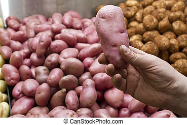 desiree potatoes - Desiree potatoes have a firm, creamy...