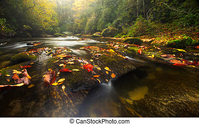 Fall Colors on Appalachian River - The Chattooga River winds...