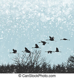 Winter Migration - Cold wintry skies feature geese flying in...