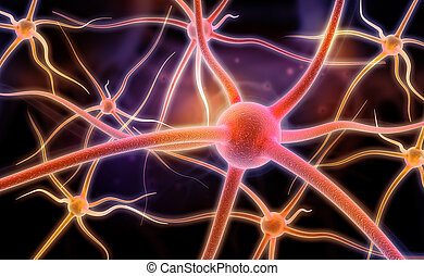 Neuron. Active nerve cell in human neural system