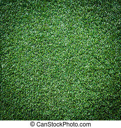 Turf Grass Texture and surface