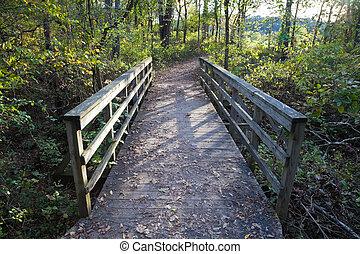 legno, ponte, vecchio