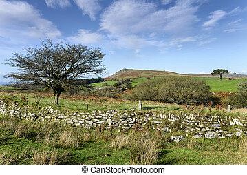 Dartmoor View - Dartmoor landscape in late Autumn