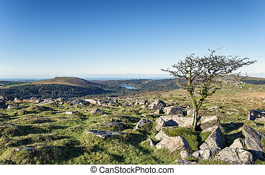 Dartmoor - Looking out towards Burrator Reservoir and...