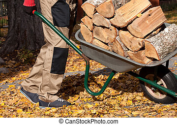 Firewood on the wheelbarrow - Gardener pulling the heavy...