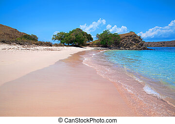 Pink Beach - Sunny day on Pink Beach in Komodo National Park