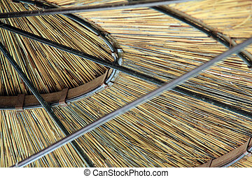 Thatched Roof of  Umbrella