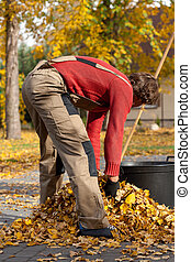 Man filling the bucket with leaves - Young garden worker...