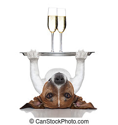 happy new year dog - dog lifting a service tray with two...