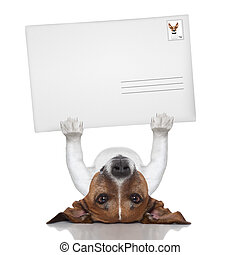 mail dog lifting a big and blank envelope