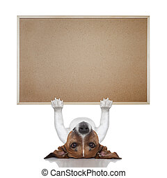 dog banner - jack russel terrier lifting a big placard