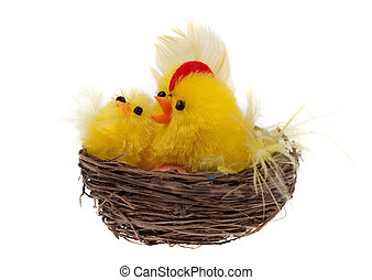 yellow easter chicks isolated