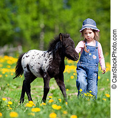 Child and foal in filed - Small girl with foal in the meadow...