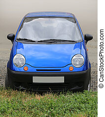small blue car parked before lawn