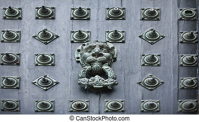Metal lion - Rivets from the front door of the Cathedral of...