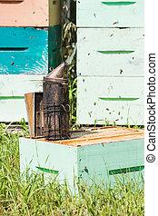 Bee Smoker At Apiary