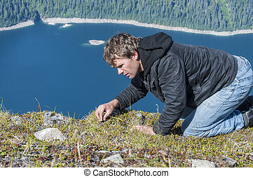 Foraging man - Caucasian man crawls on top of mountain as he...