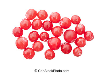 Red huckleberries - Closeup of bunch of red Vaccinium...