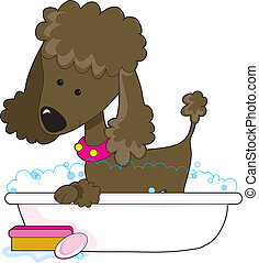 Poodle Bath Brown - A cute brown poodle in a bath tub