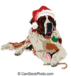 Saint Bernard in hat santa claus - Dog in Santa Claus hat on...