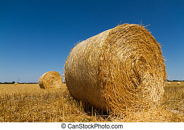 Straw bales in the light of sunset