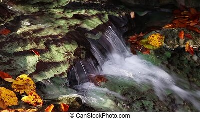 Autumn Flow Loop - Water flows over a limestone ledge in a...