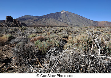 scenic travel location - Tenerife view of the Teide volcano