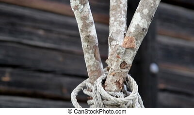 The 3 stem Wooden lath Sticks tied with a cord knot - The...