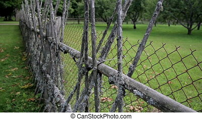 The old lath fence of the ranch and the trees - The green...