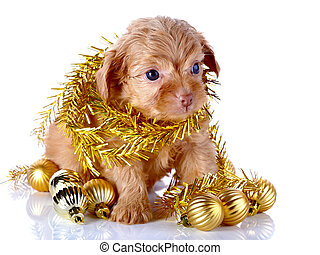 Puppy with New Year's balls and tinsel.