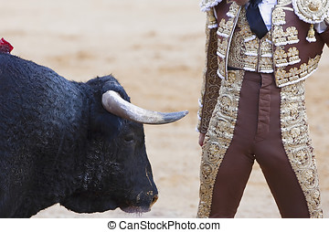 Bullfighter very close to the bull, Andalucia, Spain