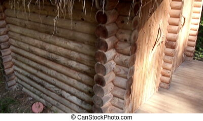 Close up image of the grass eco roof in log house