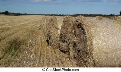 Up close image of the hay balls on the left side