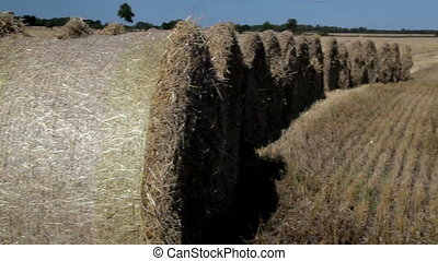The haystack all piled up