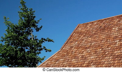 Full-length view of the cedar wooden shingle roof and the tree next to it