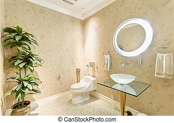 Bathroom toilet in luxury house