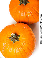 Orange pumpkins - Large orange pumpkins on a white...