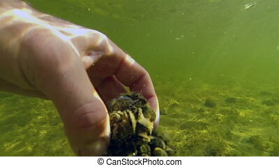 Holding a stone while submerged in the lake