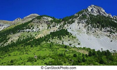 Pyrenees mountains summer landscape - Pyrenees mountains