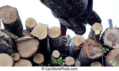 Birch logs loaded at the back of the truck while cars are...