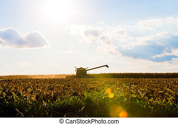 Corn Harvesting Machine Silhouette - Corn harvesting...