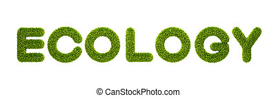 """symbolic grassy word \""""ecology\"""" 3d rendering"""