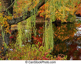Beautiful pond in Autumn - Brilliant reflections on a pond